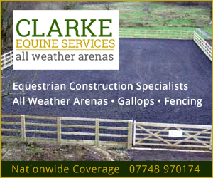 Clarke Equine Services 2020 (North Yorkshire Horse)