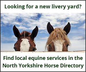 Livery Yards (North Yorkshire Horse)