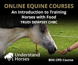 UH - An Introduction To Training Horses With Food (North Yorkshire Horse)